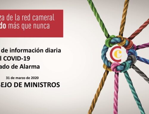 Medidas del Consejo de Ministros el 31 de marzo