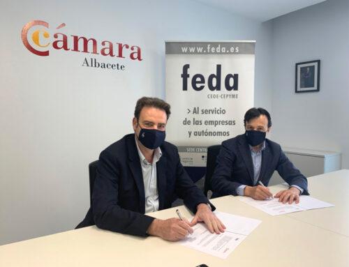 La Cámara de Comercio de Albacete y FEDA impulsan el desarrollo empresarial en la provincia